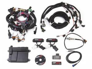 Holley EFI - 550-616N HP EFI ECU & Harness Kit, 99-04 2V Ford Modular EFI Kit, NTK O2