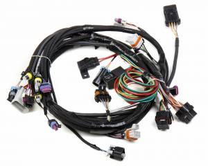 Holley EFI - 550-918 Terminator X MAX LS2/LS3/Late Truck 58X/4X LS MPFI Kit w/Transmission Control - Image 3